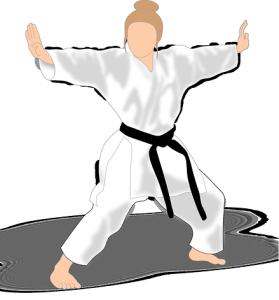 Karate lernen in Blieskastel